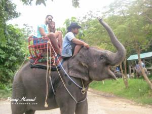 Namuang Elephant Ride