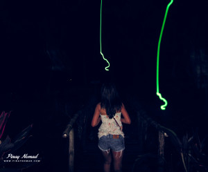Fireflies in Palawan