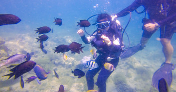 PLANET DIVE ANILAO BATANGAS