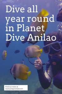 planet dive resort blog