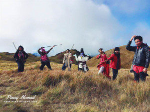 grasss land mt pulag