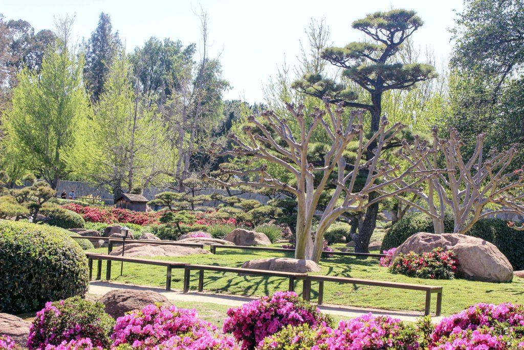 japanese garden little tokyo